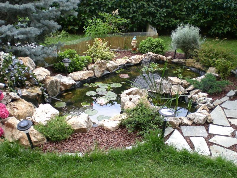 La roccia in giardino for Laghetto i giardini