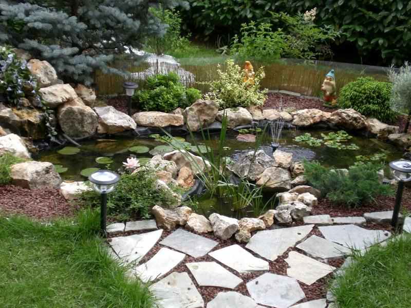Alex alex for Cascate e laghetti da giardino